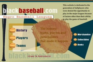 Blackbaseball's Negro Baseball Leagues